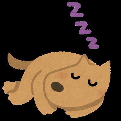 sleep_animal_dog.png