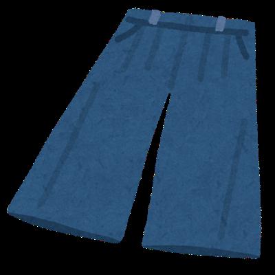 fashion_gaucho pants.png
